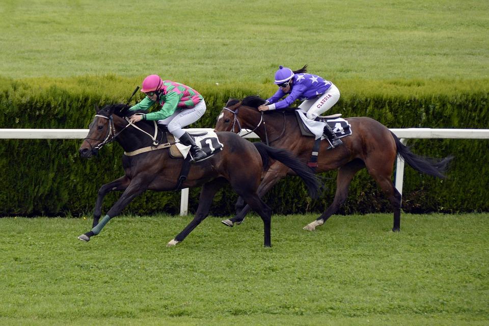 Adding horse racing tips into a treble